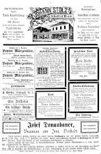 Neue Warte am Inn 18931209 Seite: 8