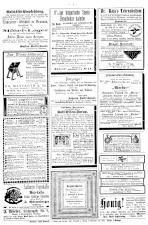Neue Warte am Inn 18931230 Seite: 8
