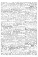 Neue Warte am Inn 18950216 Seite: 5