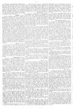 Neue Warte am Inn 18950622 Seite: 4