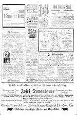 Neue Warte am Inn 18951123 Seite: 11