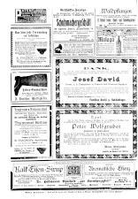 Neue Warte am Inn 19100108 Seite: 8
