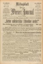 Neues Wiener Journal 19170616 Seite: 13