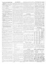 Pester Lloyd 18950718 Seite: 5