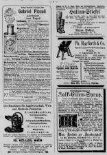 Pettauer Zeitung 18930101 Seite: 8