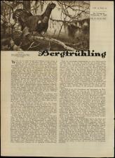 Radio Wien 19330414 Seite: 12