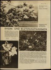 Radio Wien 19330421 Seite: 14