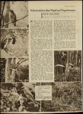 Radio Wien 19330421 Seite: 20