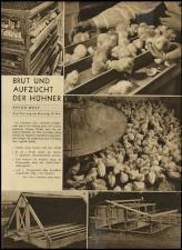 Radio Wien 19330512 Seite: 11
