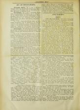 Lavanttaler Bote 18921231 Seite: 2