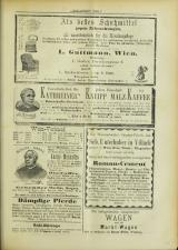 Lavanttaler Bote 18930415 Seite: 11