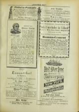 Lavanttaler Bote 18930617 Seite: 13