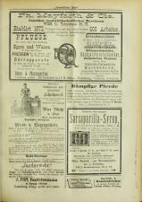 Lavanttaler Bote 18930617 Seite: 9