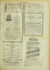 Lavanttaler Bote 18930701 Seite: 13