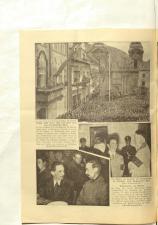 Volksfreund 19381112 Seite: 12