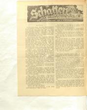 Volksfreund 19381203 Seite: 10