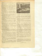 Volksfreund 19381203 Seite: 11