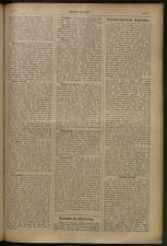 Villacher Zeitung 19080813 Seite: 7