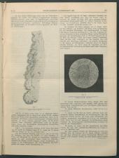 Wiener Klinische Wochenschrift 18960409 Seite: 3