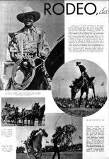 Wiener Bilder 19381113 Seite: 8
