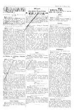 Wiener Zeitung 19170228 Seite: 18