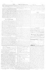 Wiener Sonn- und Montags-Zeitung 18930102 Seite: 3