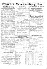 Znaimer Wochenblatt 18840308 Seite: 15