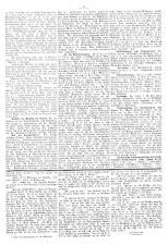 Znaimer Wochenblatt 19060623 Seite: 5