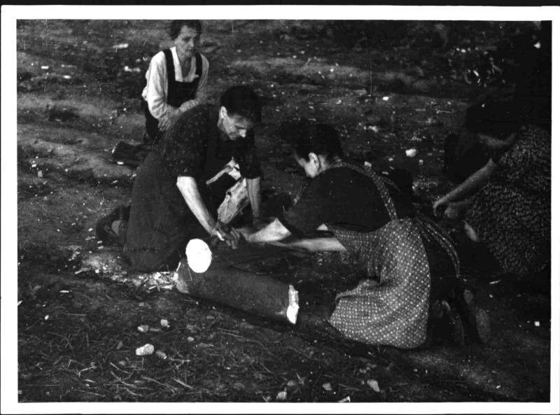 Holzsammlerinnen
