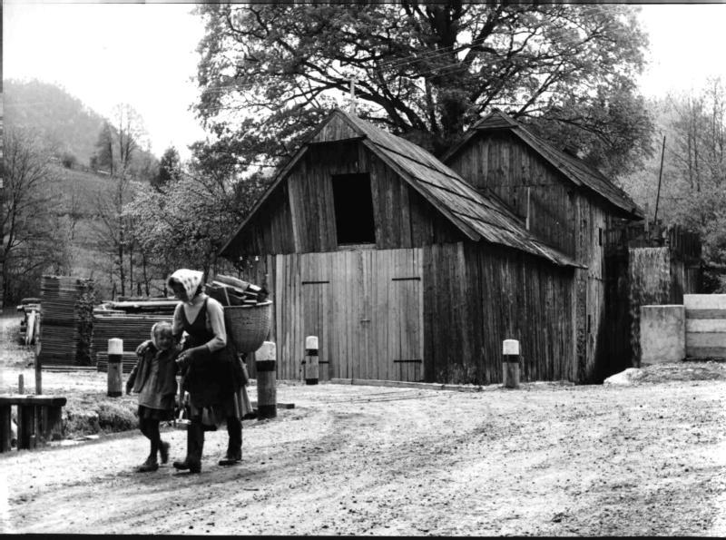 Holzsammlerin