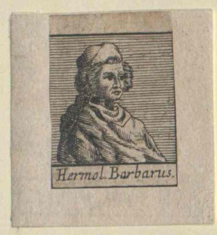 Barbaro, Ermolao