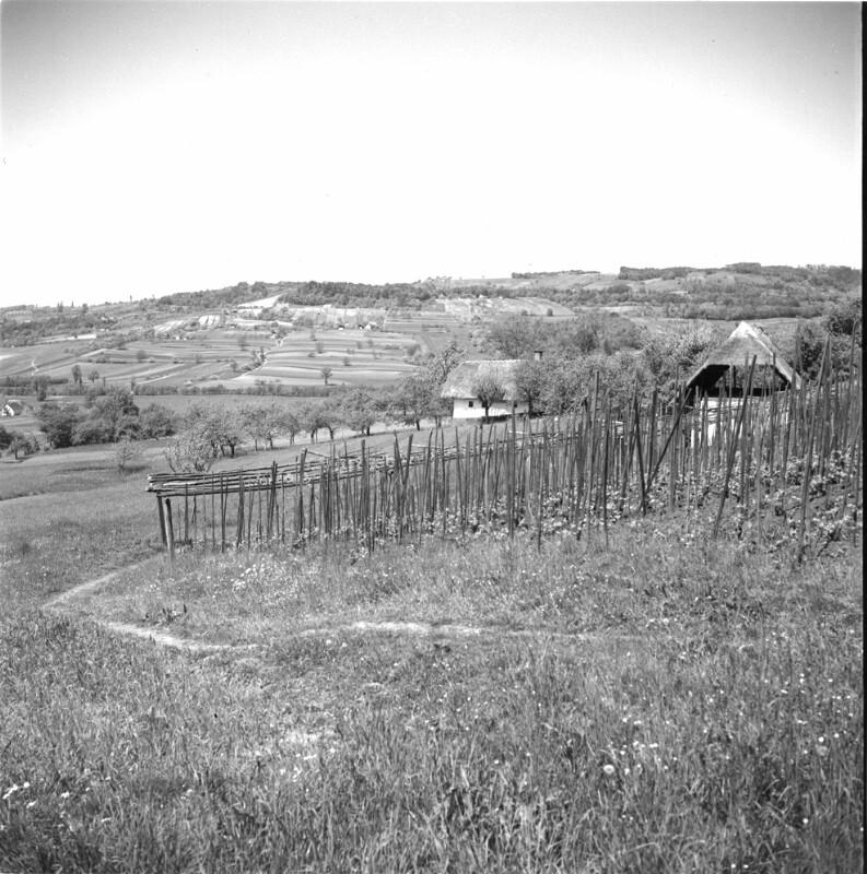 Oststeirisches Hügelland