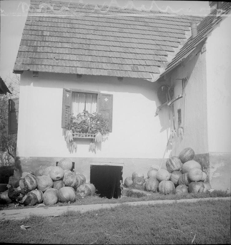 Bauernhaus in der Oststeiermark