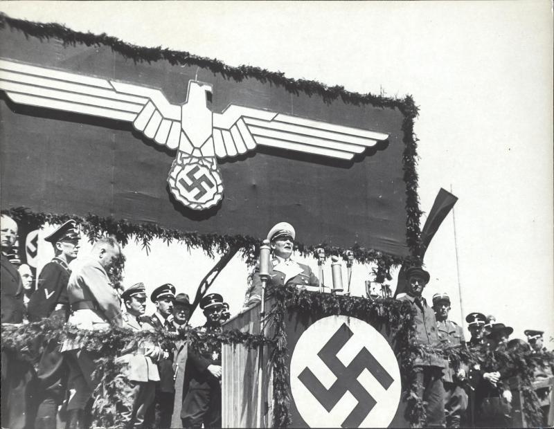 hermann goering werke: