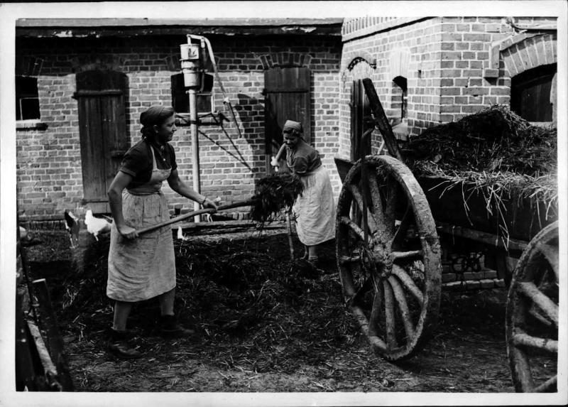 Weibliche Angehörige des RAD in der Landwirtschaft