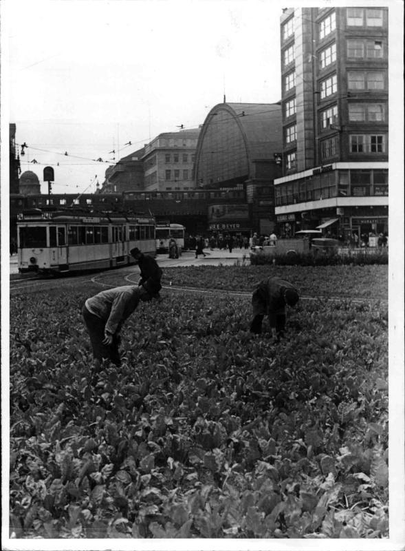 Gemüse in Berlin