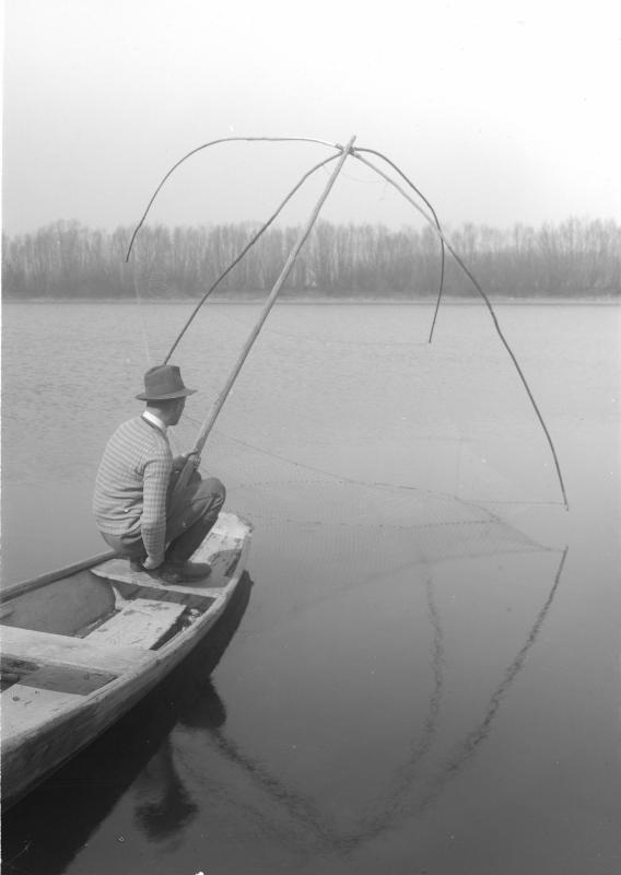 Netzfischer bei Petronell