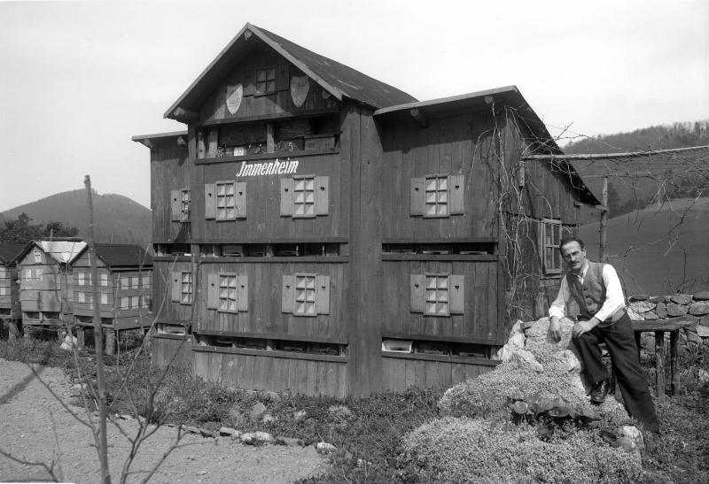 Imkerschule in Neuhaus im Triestingtal
