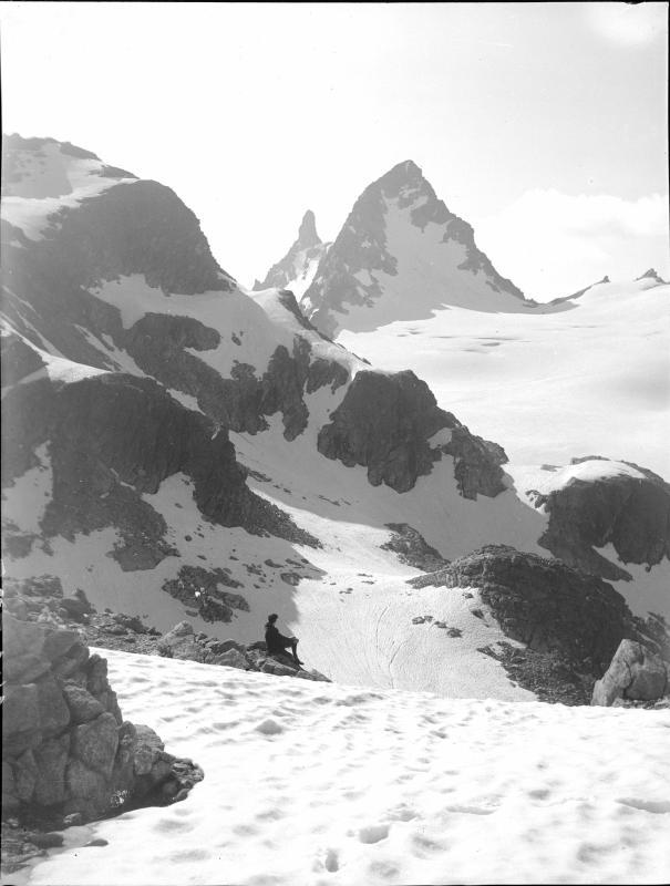 Großer Seehorn