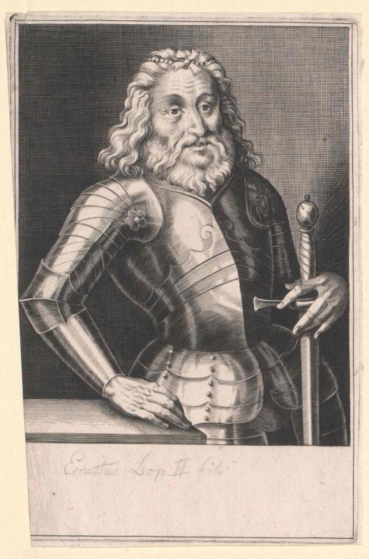 Ernst I. der Eiserne, Erzherzog von Österreich