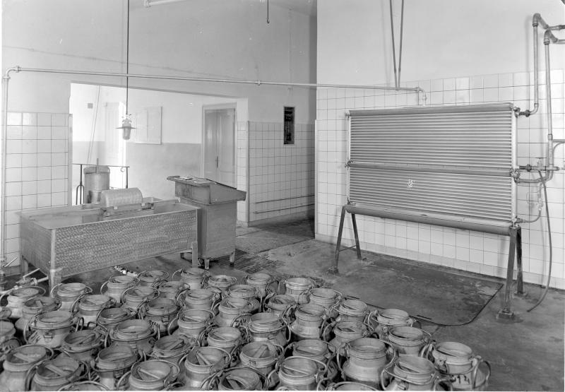 Milchübernahmestelle im Mittelburgenland