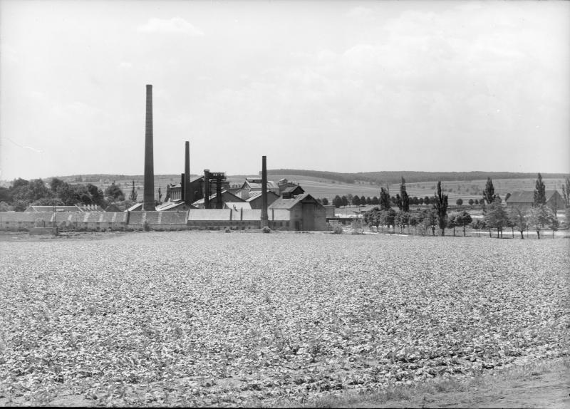 Siegendorfer Zuckerfabrik