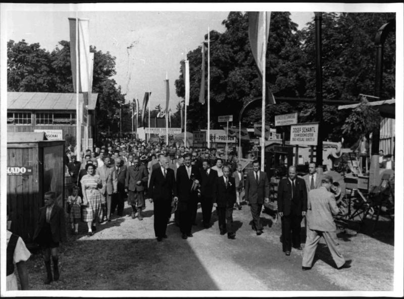 Wiener Neustadt-Ausstellung