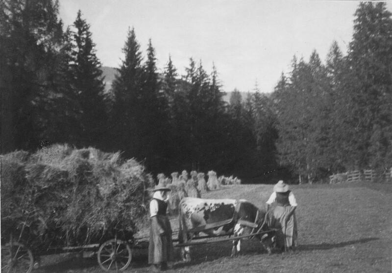 Bei der Heuernte in Praggs (Südtirol)