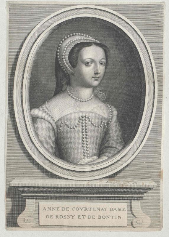 Courtenay, Dame de Rosny et de Bontin, Anne