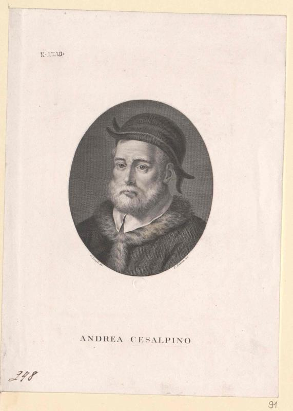 Cesalpino, Andrea