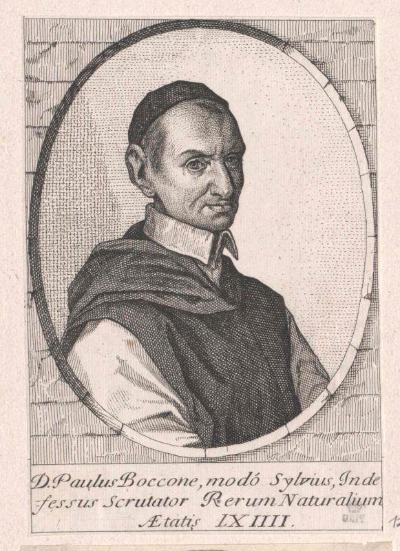 Boccone, Silvio Paolo