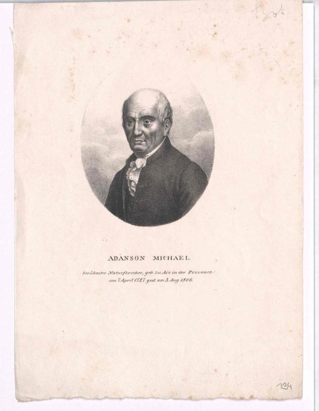 Adanson, Michel
