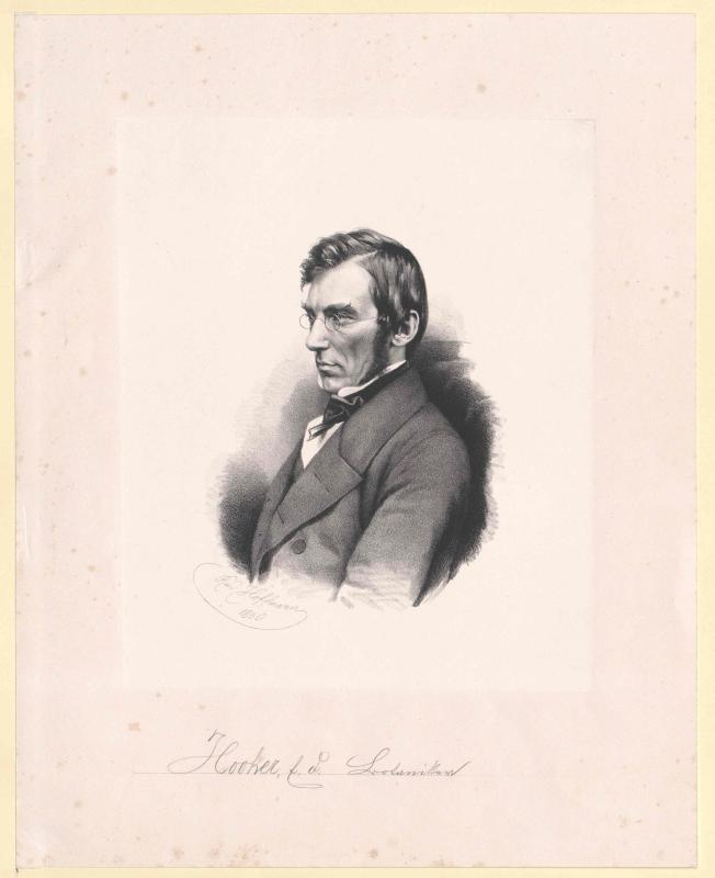 Hooker, Joseph Dalton