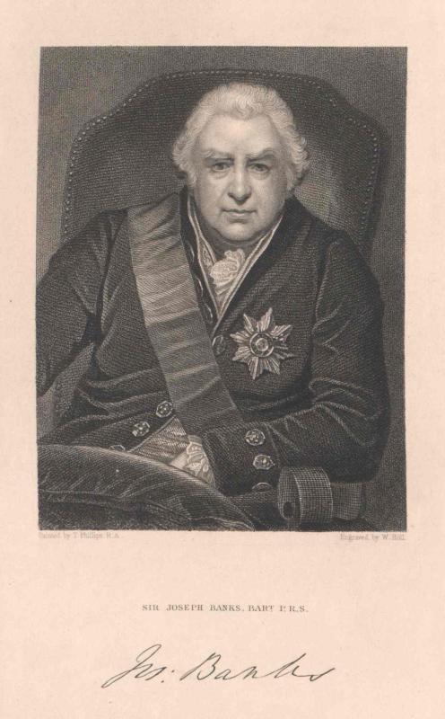 Banks, Joseph Baronet